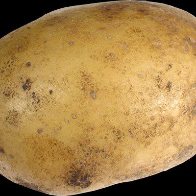 Enzo the Potato Smash 4